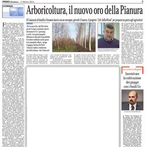 Arboricoltura, il nuovo oro della Pianura