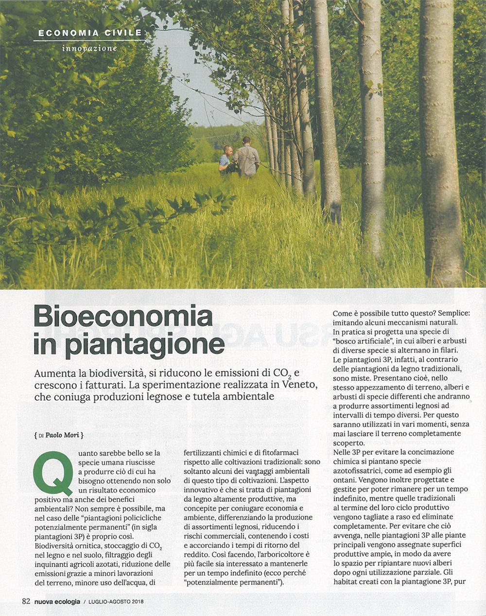 Bioeconomia in piantagione